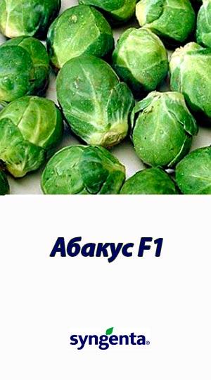 Abakus-F1-kapusta-bryuselskaya