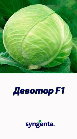 Devotor-F1