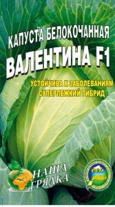 Капуста Валентина пакет 100 семян