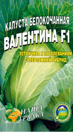 Капуста-Валентина