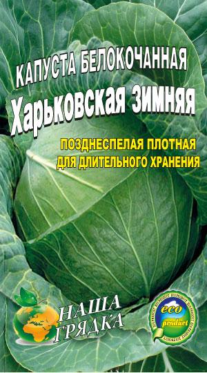 Капуста-Харьковская-зимняя