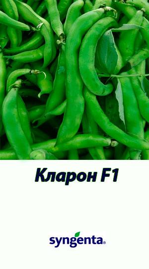 Klaron-fasol-sparzhevaya-Syngenta