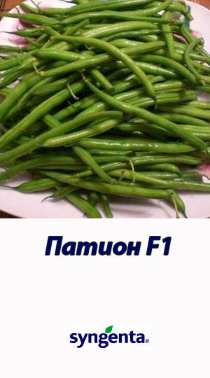 Pation-fasol-sparzhevaya-Syngenta