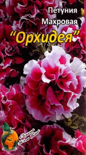 Петуния-Орхидея