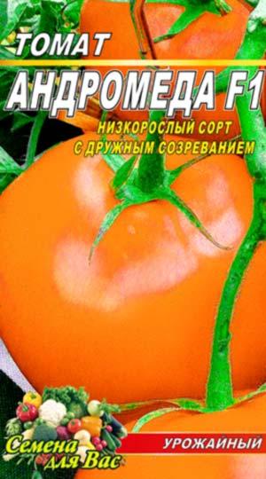 Tomat-Andromeda-zolotaya