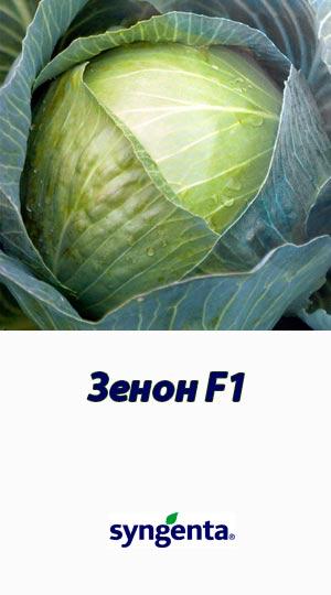 Zenon-F1