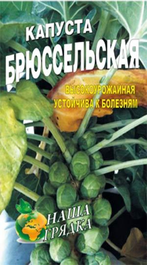 bryusselskaya-kapusta-semena