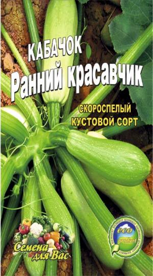 кабачок-ранний-красавец
