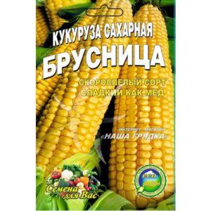 кукуруза-брусница|Кукуруза-Брусниця