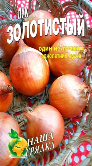 лук-золотистый-семена