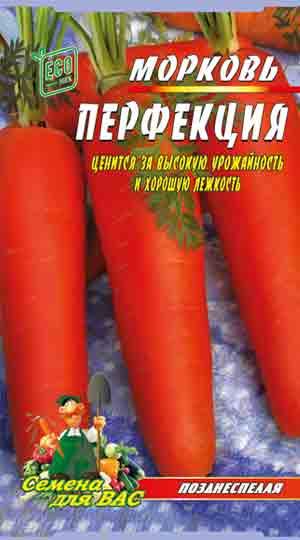 morkov-perfekcziya