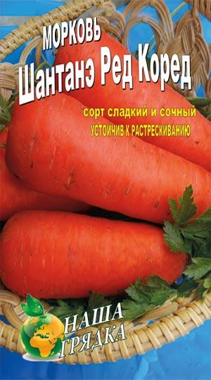 морковь шантанэ-ред-коред