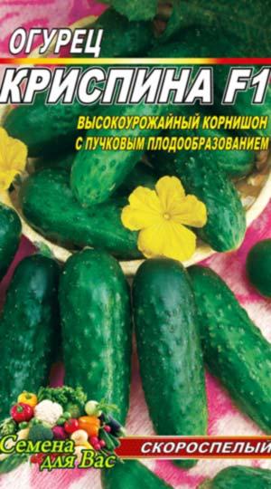 Огурец-Криспина