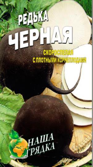 редька-черная-сквирская