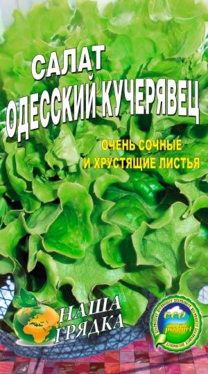 салат-одесский-кучерявый