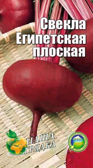 svekla-egipetskaya-ploskaya