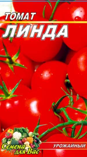 tomat-linda-1