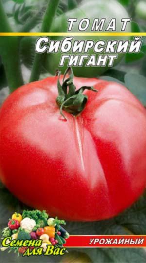 tomat-sibirskiy-gigant