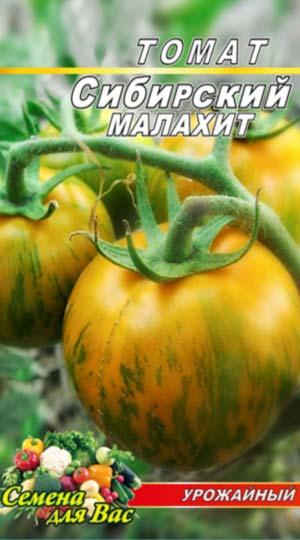 tomat-sibirskiy-malahit