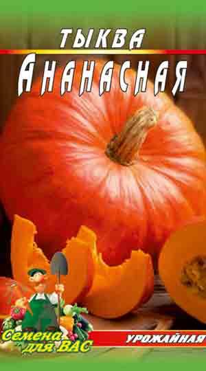 tykva-ananasnaya